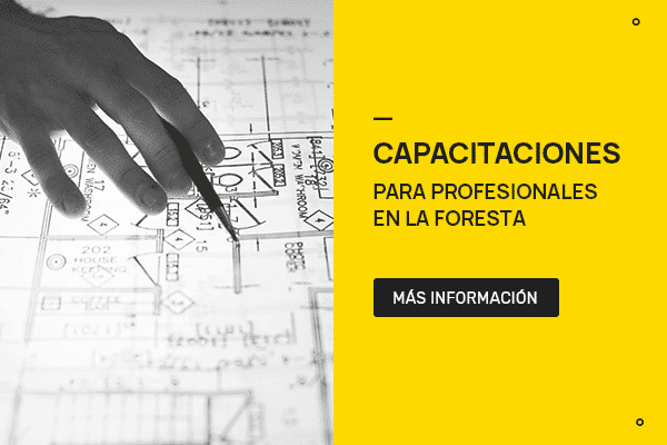 Capacitaciones en La Foresta